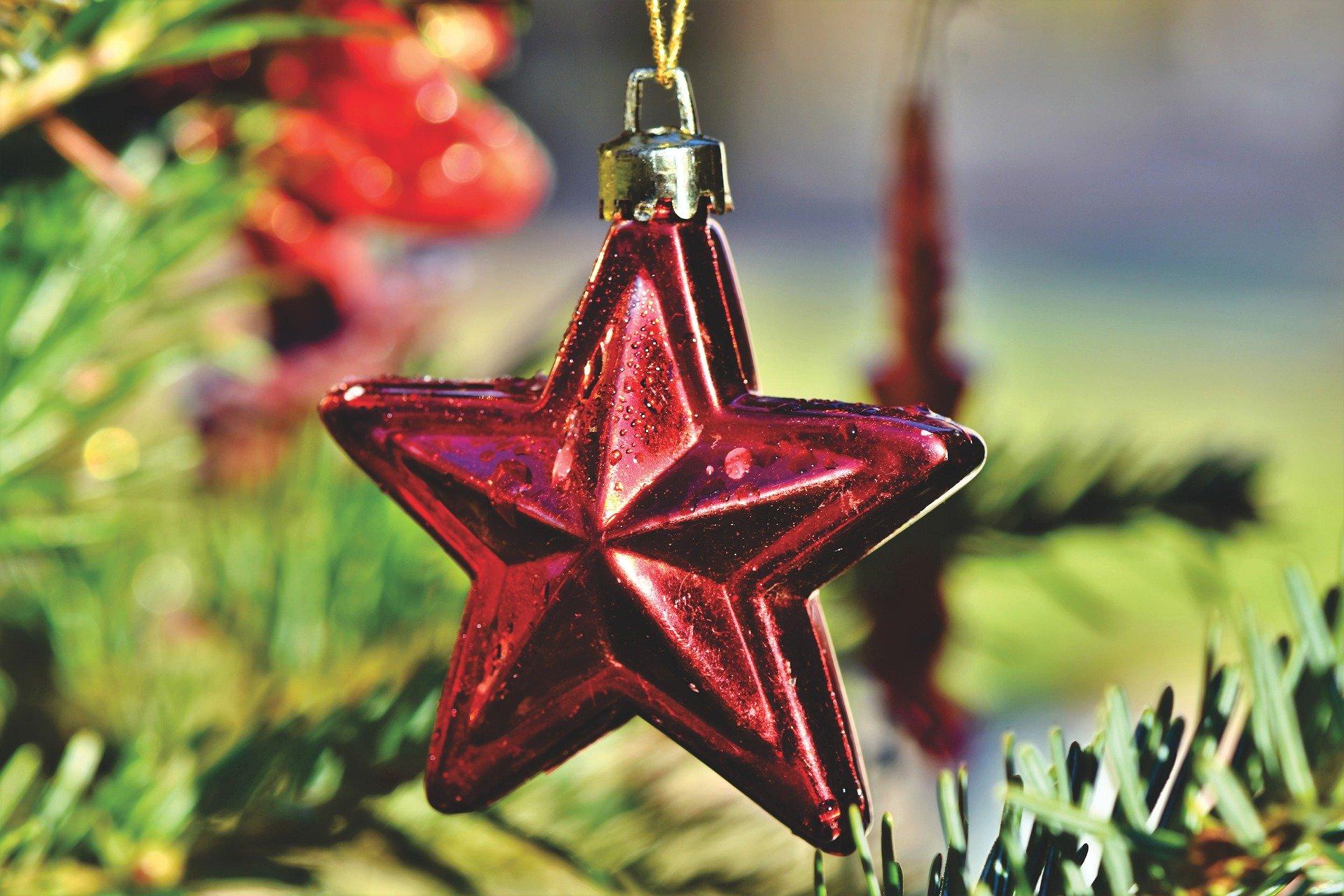 Christmas tree, pop-up bar