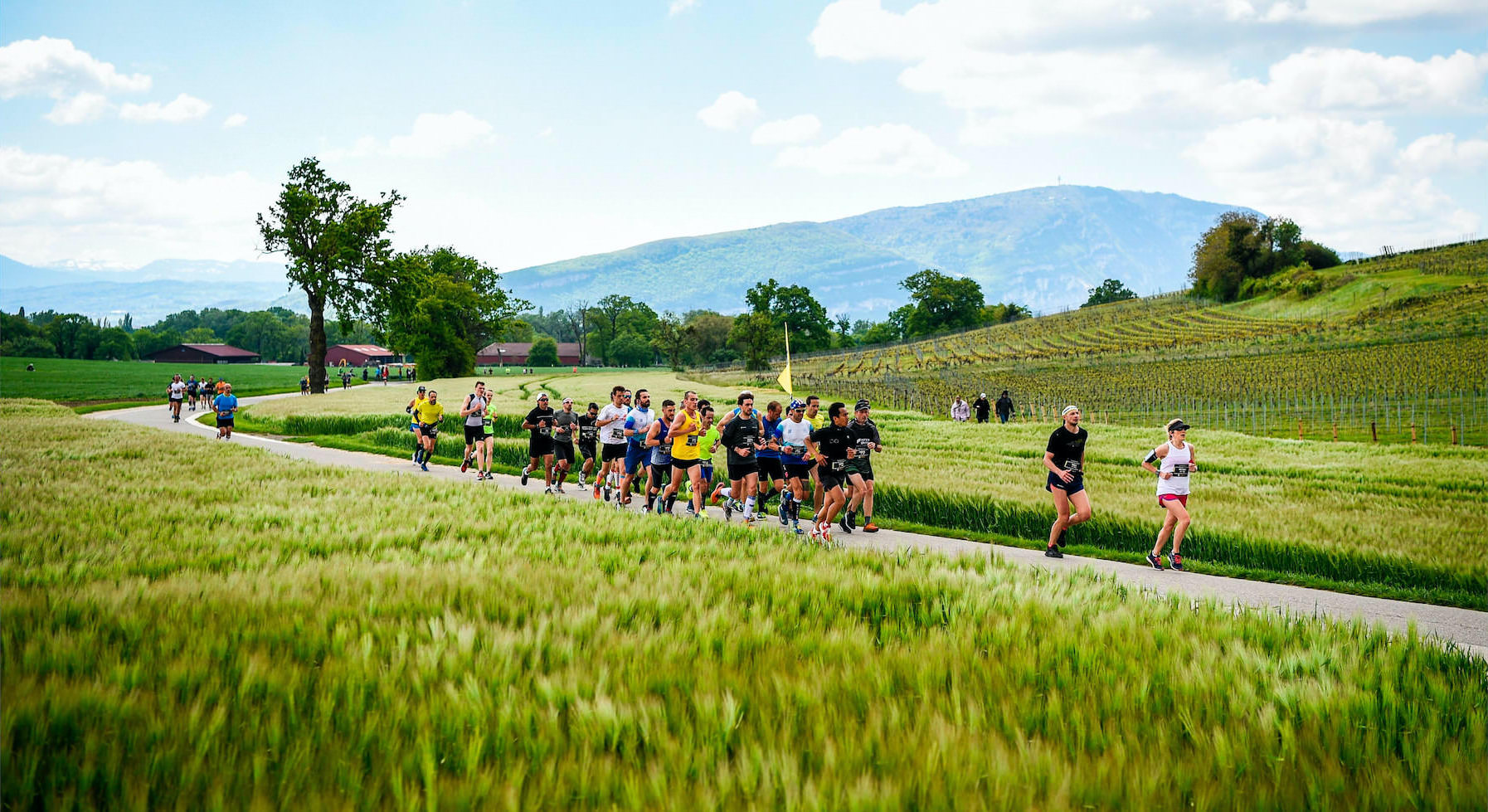 Sustainability OC Sport