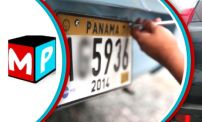 Up to 59% OFF: License Plate Renewal Service