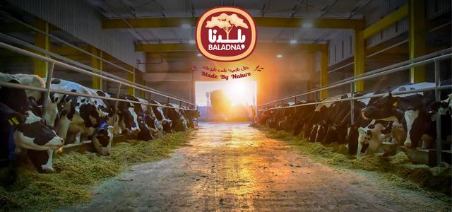 Baladna Farm