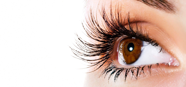 Lash Regrowth specialises in hair growth services for the eyelashes, the eyebrows and the scalp. Using the latest micro-needle technology from Germany, they stimulate the hair follicles promoting natural hair growth without pain, downtime or side effects.