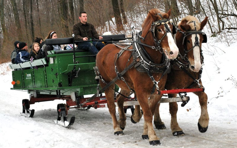 Horse Drawn Sleigh Ride at Seven Springs Mountain Resort