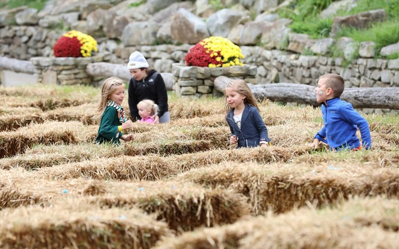 Autumnfest Hay Maze