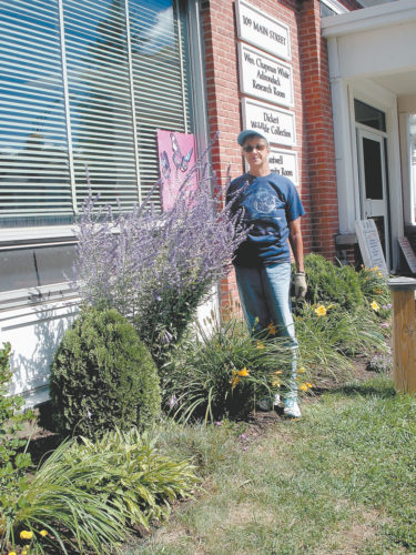 LIBRARY GARDEN VOLUNTEER —Stevie Summers, standing by a Russian Sage plant in August, maintains the library garden. Funds from a memorial donation for Dorothy Reichart Meagher were used to purchase annuals, fall mums and garden supplies. (Photo provided)