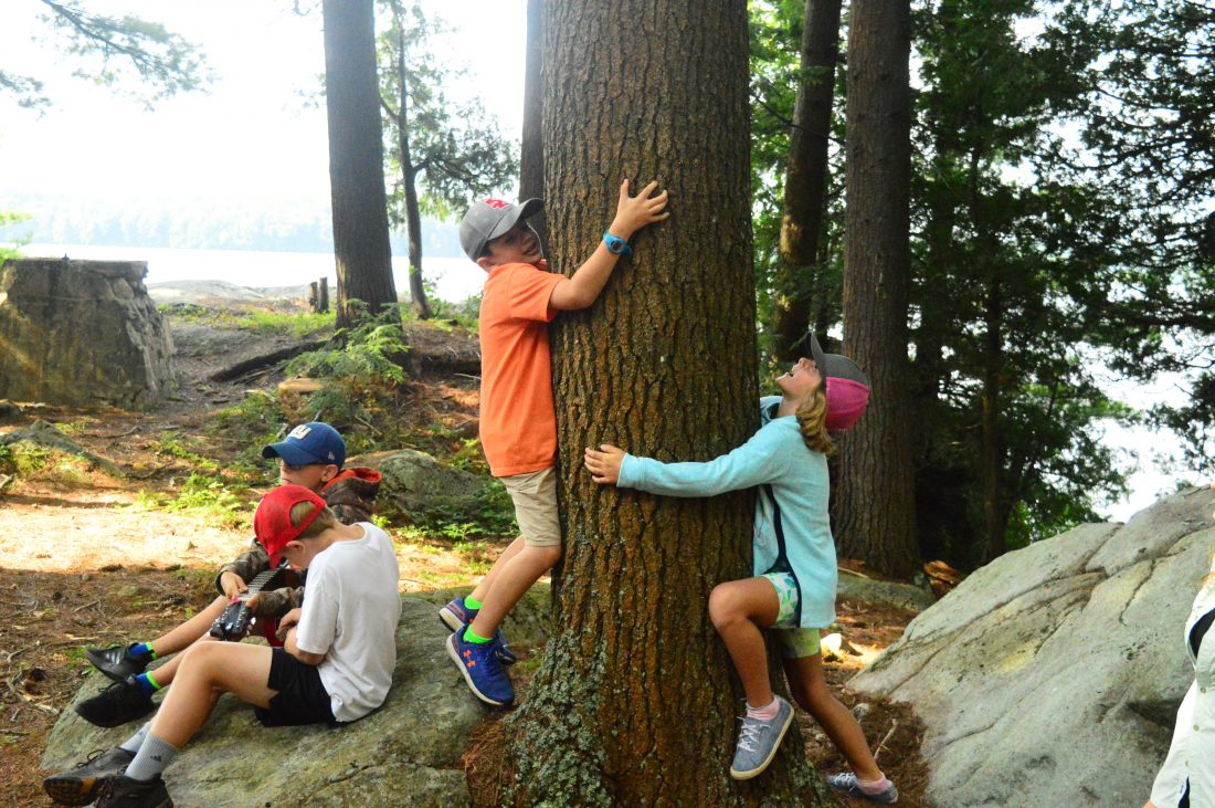 """8bb0854bf85 Kids play """"Hug a Tree"""" on Eagle Island. The camp opened up for the first  time in years this summer and campers have once again been learning, ..."""