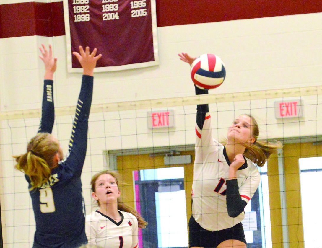 Love & volleyball: Bopp's passion makes her stand out | News, Sports, Jobs