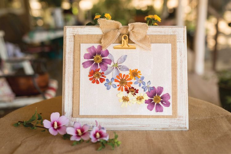 pressedflowers2