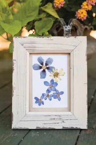 pressedflowers01