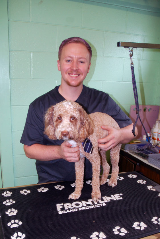 Groomer joins WC Vet Clinic | News, Sports, Jobs - The