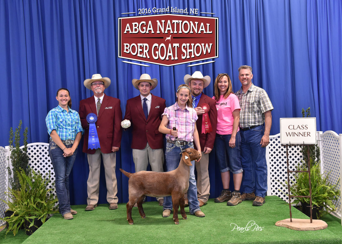 Nothing dull about Boer goats   News, Sports, Jobs - The ... - photo#49