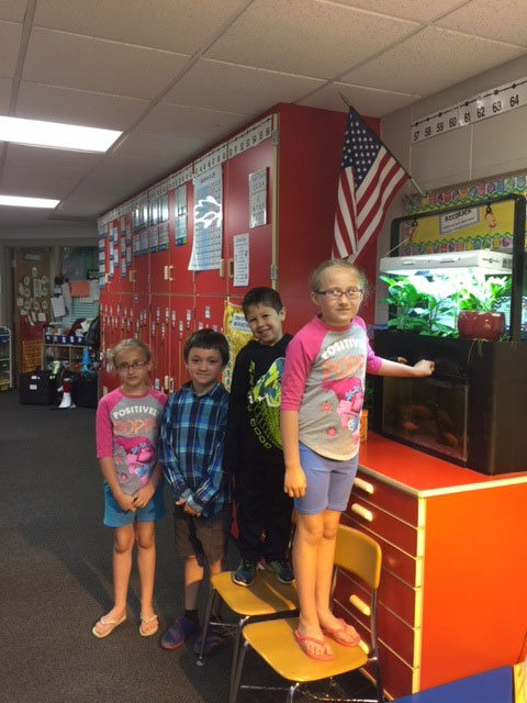 MARSP awards mini-grant to Woodland first grade teacher   News