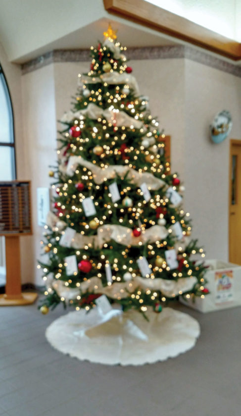 Christmas Giving Tree Ideas.Giving Tree News Sports Jobs The Daily News