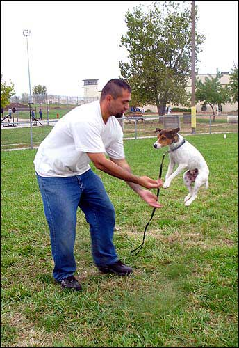 Prisoners reforming pets | News, Sports, Jobs - Lawrence