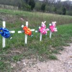 Plane crash victims remembered by friends