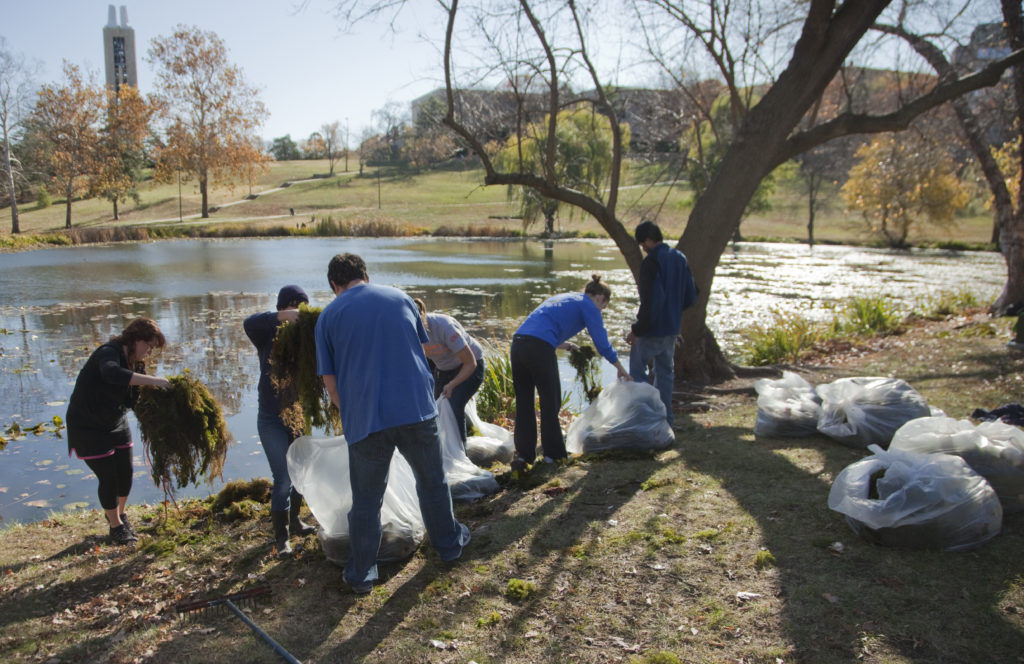 Volunteers resuscitate Potter Lake | News, Sports, Jobs - Lawrence
