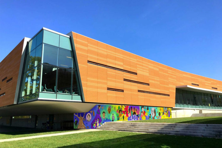 innovative design 253c3 3d8dc City leaders approve library mural  contract to return to commission for  review