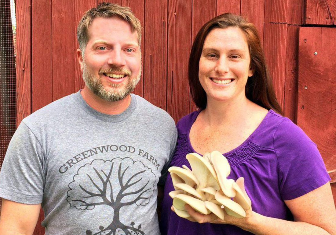 Meet two young entrepreneurs betting the farm on homegrown mushrooms