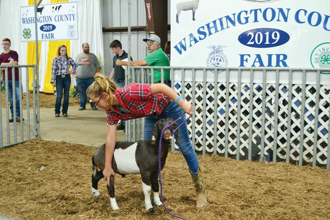 Washington County Fair wraps up with livestock sale | News