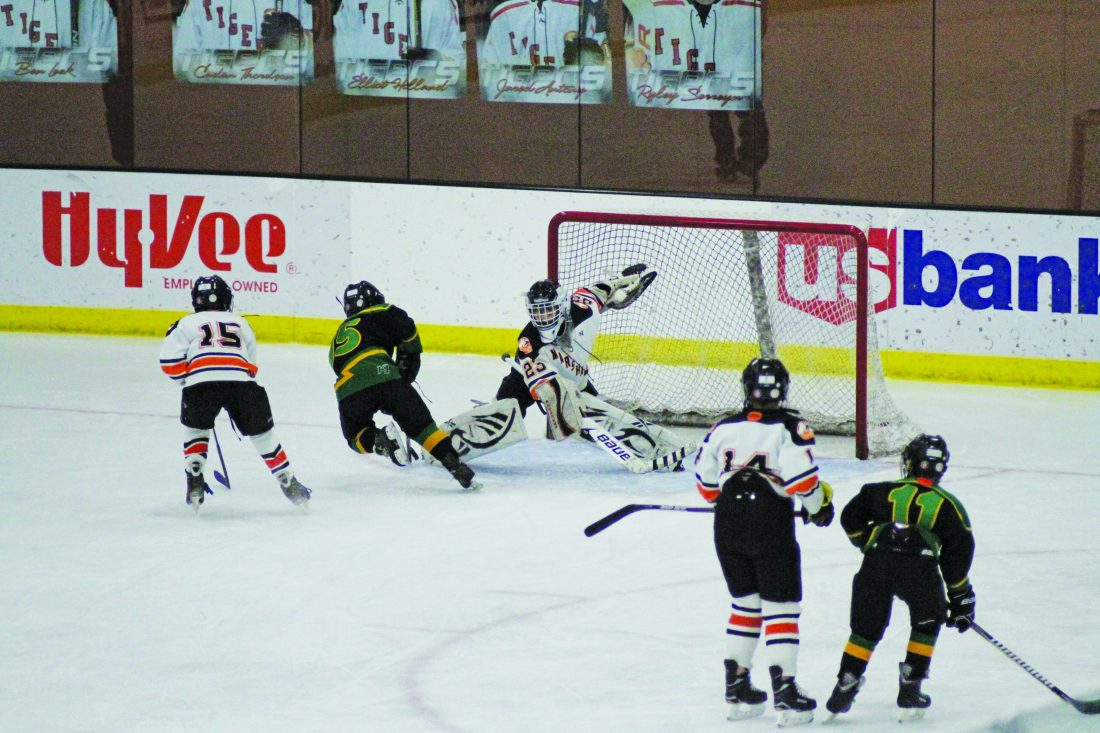 Youth Hockey Marshall Squirt B Hockey Drops Weekend Games