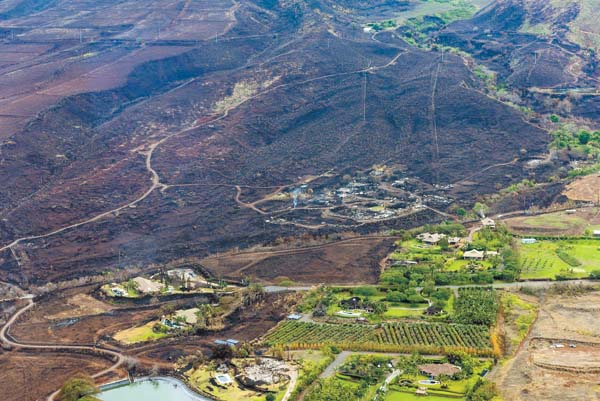 Kauaula Valley Fire Victims Have One Goal Rebuild News