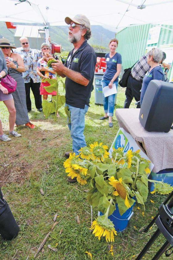 Maui's first industrial hemp farm set to begin production