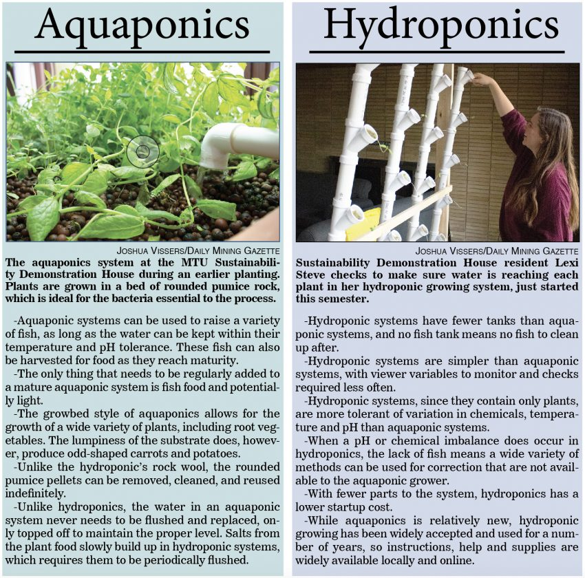 A side-by-side comparison of the benefits of aquaponic and hydroponic gardening. ... Sorry.