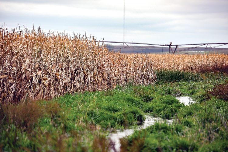 Some US farmers get a reprieve at end of tough year
