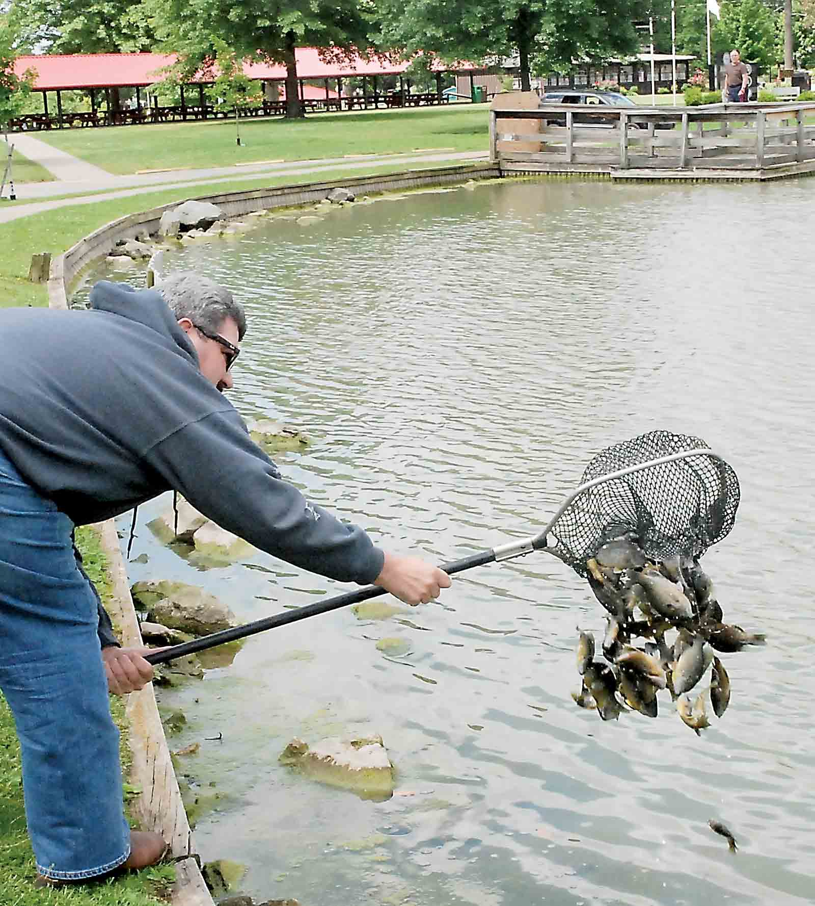 Parkersburg ponds stocked with catfish bluegill news for Stocked fishing ponds near me