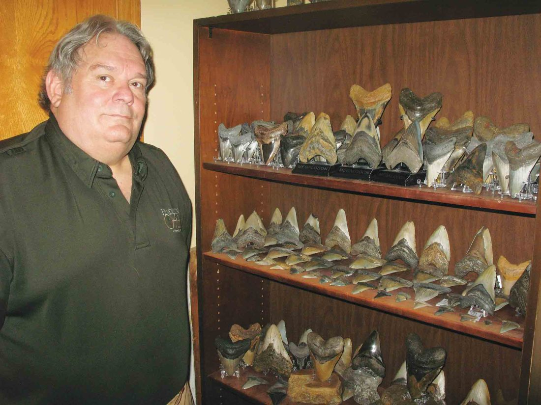 Mid-Ohio Valley man amasses collection of megalodon teeth