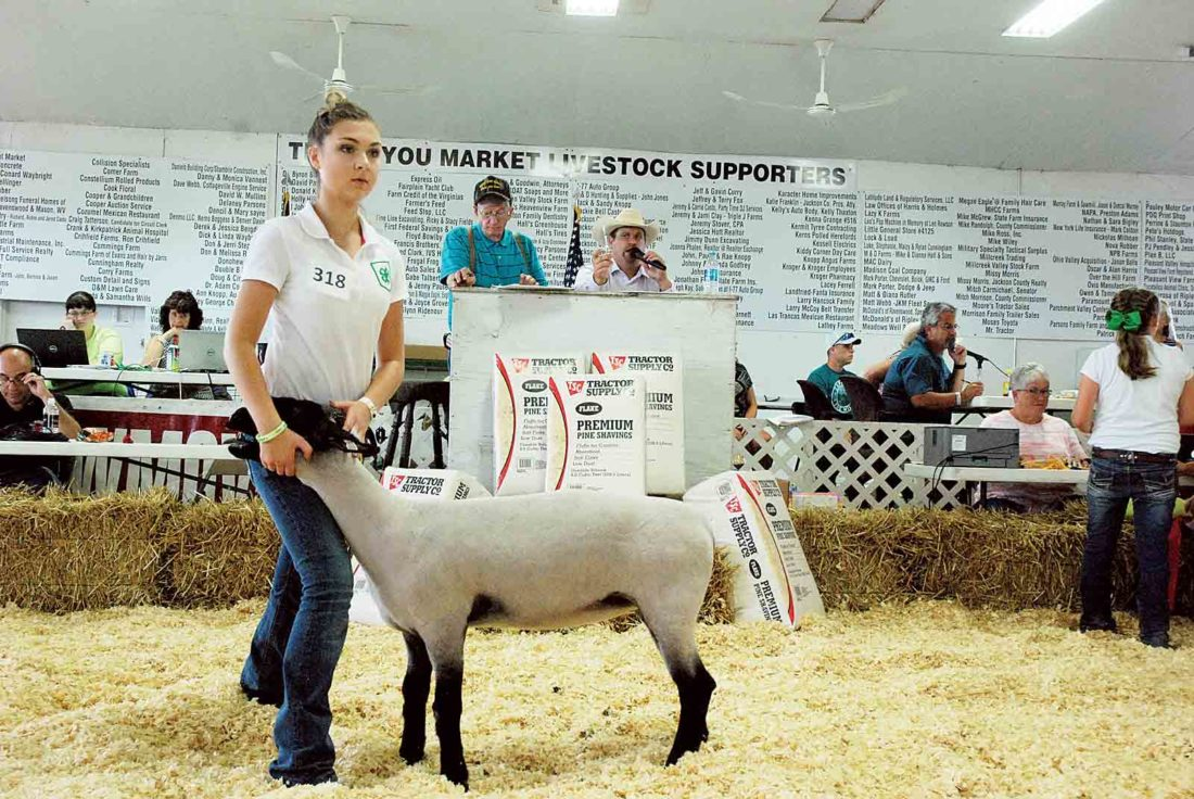 Livestock efforts pay off at Jackson County Junior Fair