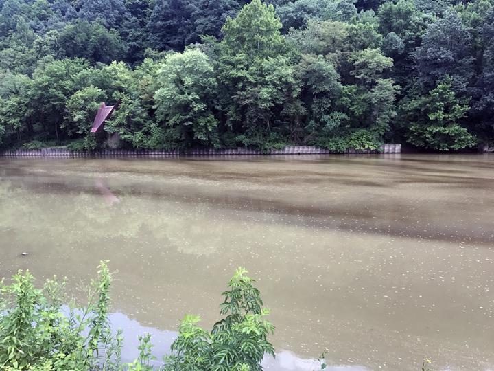 Substance found on Beaver Creek | News, Sports, Jobs - Salem