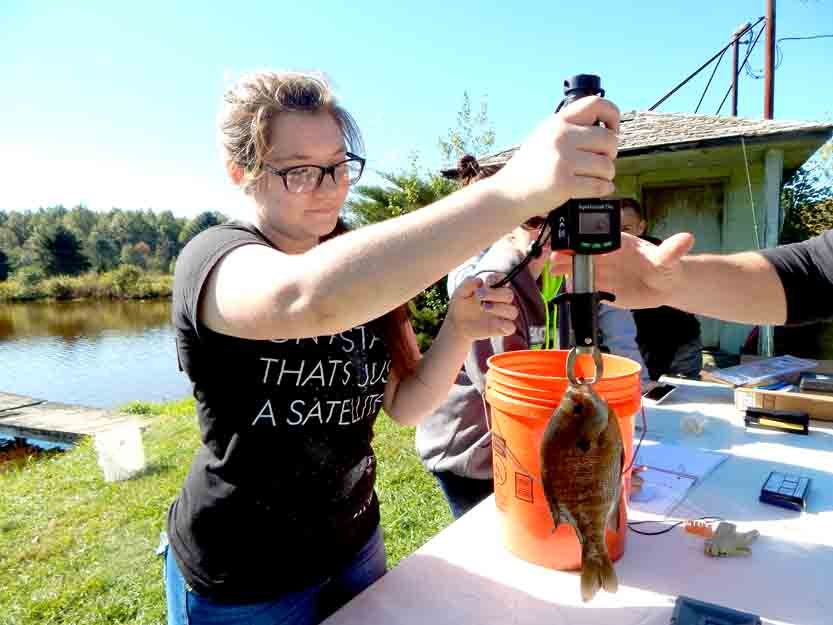 Mathews students learn at outdoor lab | News, Sports, Jobs