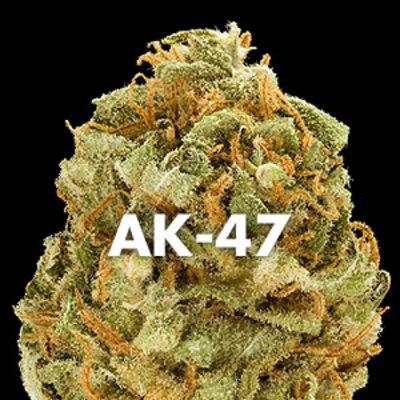 Скачать песню ак 47 марихуана можно ли дома вырастить марихуану