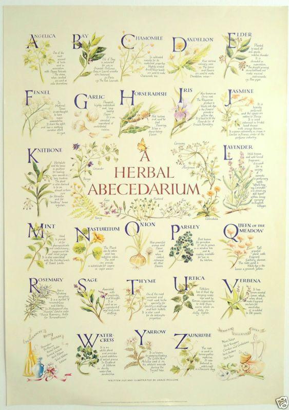 A Herbal Abecedarium