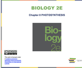Biology II Course Content, Photosynthesis Introduction, Photosynthesis Introduction Resources