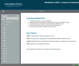 21st Century Workplace Skills: Lesson 6 Cultural Competency