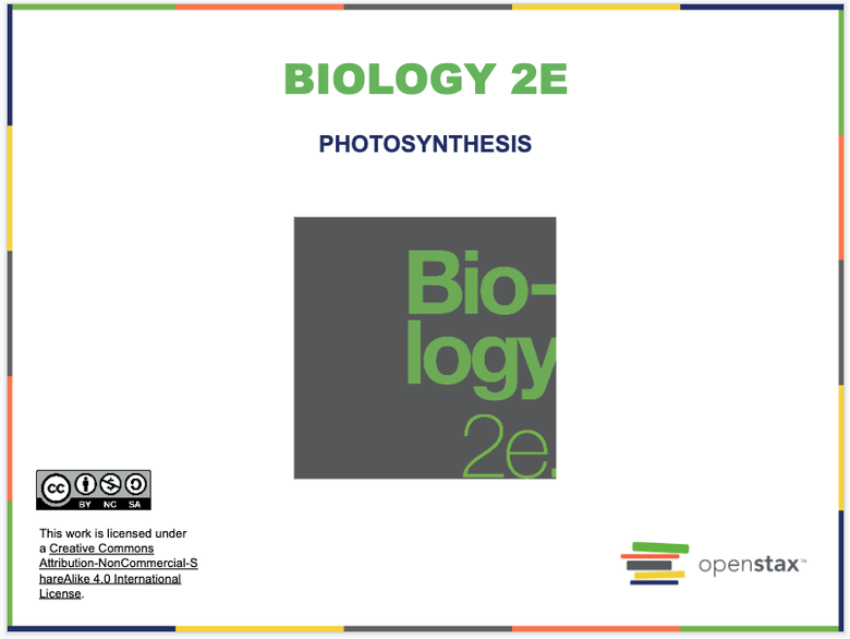 Photosynthesis Introduction Resources