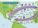 Early Globalization: The Atlantic World 1492-1650