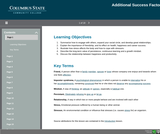 21st Century Workplace Skills: Lesson 7 Additional Success Factors