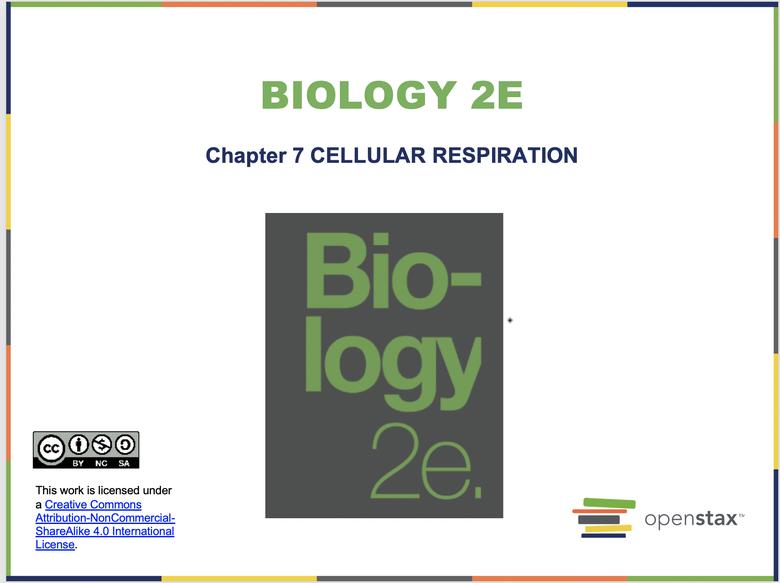 Cellular Respiration Resources
