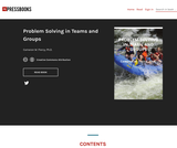 Problem Solving in Teams and Groups