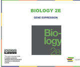 Biology I Course Content, Gene Expression, Gene Expression Resources