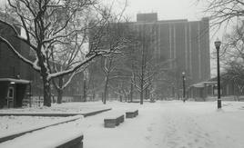 North Dorms in White