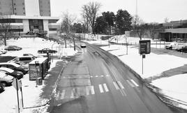 Drake union in snow
