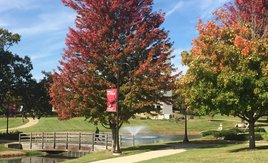 Campus is getting more beautiful by the day as fall sets in!