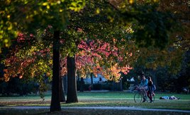 We love seeing campus in the fall! Share your pics using #MyOhioState https://t.co/e3Ok3CZXiS