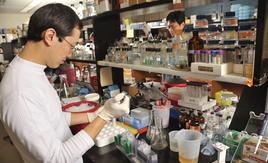 Busy Biochem