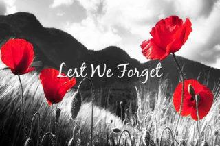 "Search Results for ""tag:remembrance-day"" – Hamilton Bulldogs"