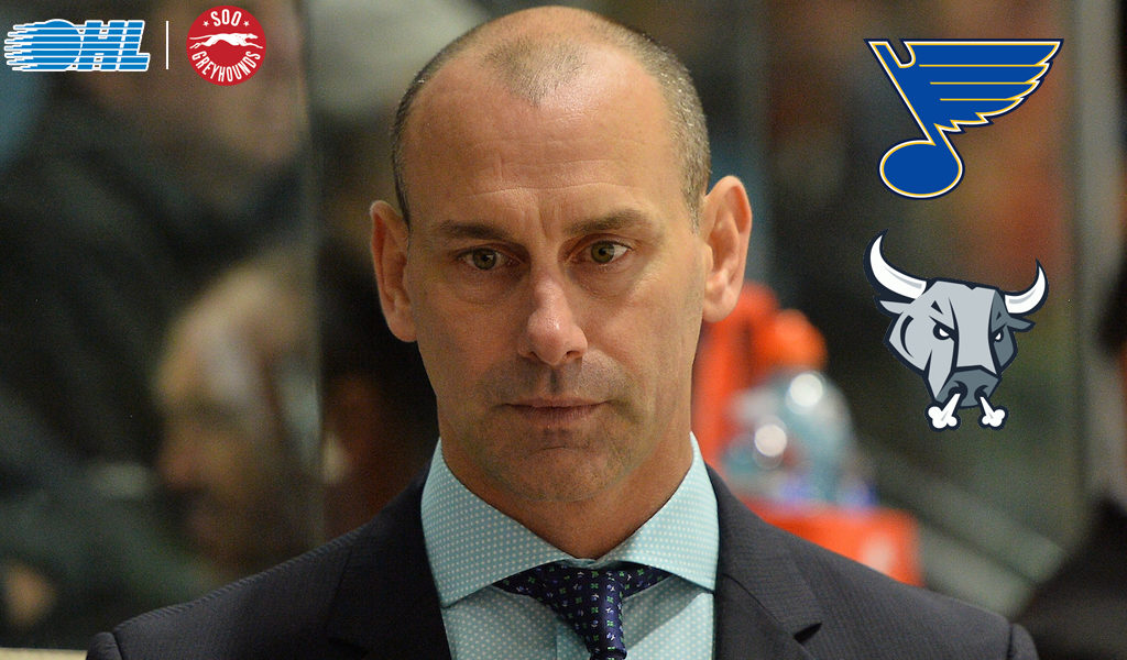 Ohl Coach Of The Year Drew Bannister Named Head Coach Of Ahl S San