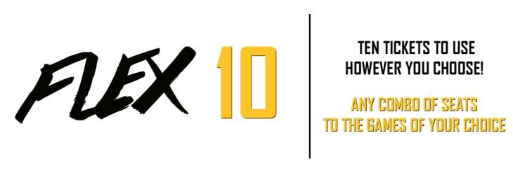 FLEX 10